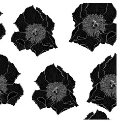 peony flower seamless pattern drawing vector image