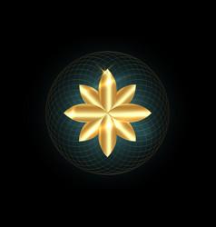 seed life symbol sacred geometry gold mandala vector image