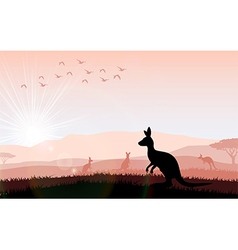 Silhouette a kangaroo the feeding vector image