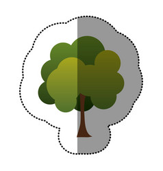 Color stamp natural tree icon vector