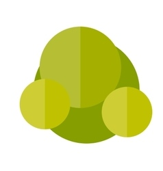 a Bush in flat style vector image