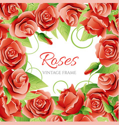red rose frame vector image vector image