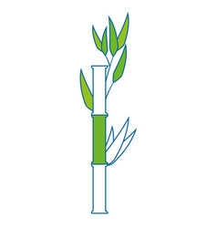 Bamboo plant icon vector