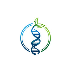 Dna or rna helix isolated icons with leaf vector