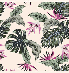 Exotic flowers tropical leaves green seamless vector