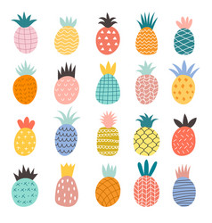 hand drawn pineapples exotic fruits cute vector image