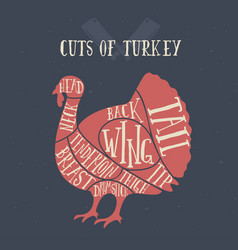 Meat cuts - turkey diagrams for butcher shop vector