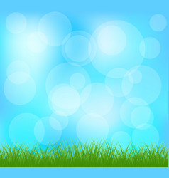 Natural green grass and blue background vector