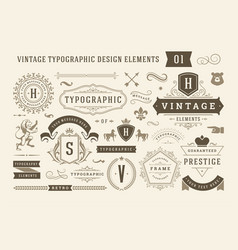 vintage typographic design elements set vector image