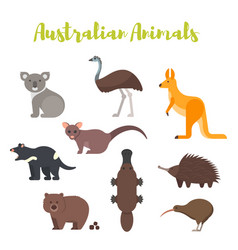 flat style set of australian animals vector image