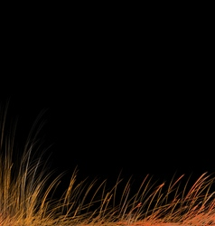 Stylized autumn grass vector image vector image
