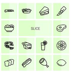 14 slice icons vector