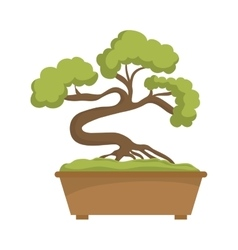Bonsai plant icon Japan culture graphic vector