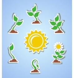 Growth progress icons vector