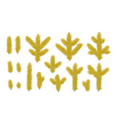 set pine fir golden branches spruce branches vector image