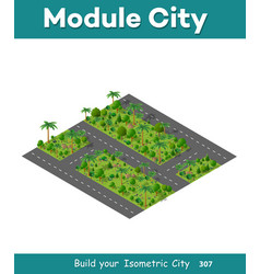 The isometric road in the forest vector