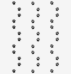 prints of dog paws vector image vector image