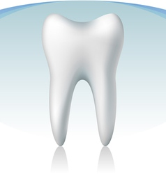 3d tooth vector image