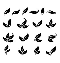 Abstract isolated black leaves branches icons set vector