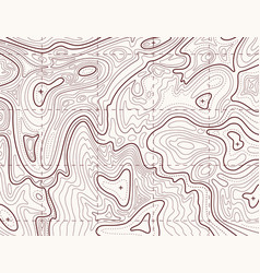 topographic map trail mapping grid contour vector image