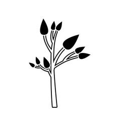 black silhouette of small tree with leafs vector image