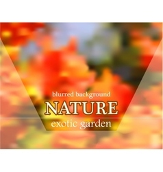 Blurred floral background with garden design vector image