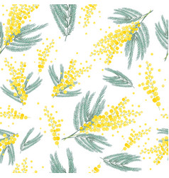 Seamless spring pattern with mimosa flower bright vector
