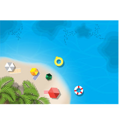 Tree palm summer beach aerial view vector