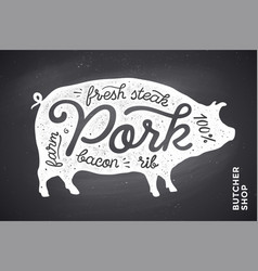 With pig silhouette pork lettering vector
