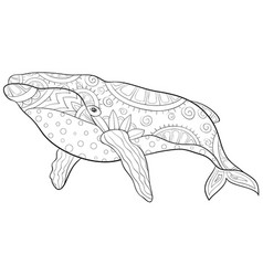 Adult coloring bookpage a cute whale with vector