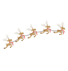 Color background with set of five reindeers with vector