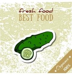 Healthy Food Cucumber vector