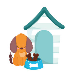 pet shop little dog sitting with house bowl bones vector image