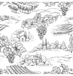 seamless pattern with grapes and rural scene vector image