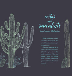 Sketch linear cactus ans succulents vector