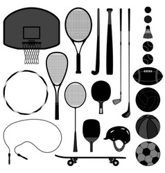 sport tool basketball tennis baseball volleyball vector image