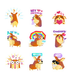 Corgi dog cartoon message icons collection vector
