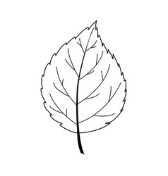 leaf line art contour drawing minimalism art vector image