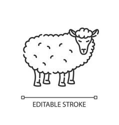 sheep pixel perfect linear icon vector image