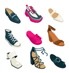 woman shoes footwear fashion collection vector image