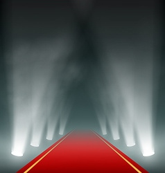 Lanterns illuminate the red carpet vector image