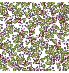 Seamless pattern blue and red Berry plants vector image vector image