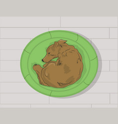 dog lying on a lounger vector image
