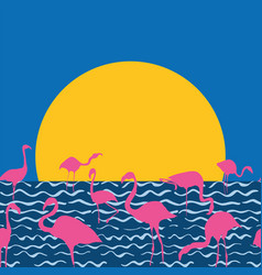 flamingo on sea sitting sun vector image