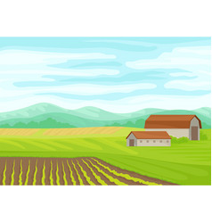 Gray stone barn in field vector