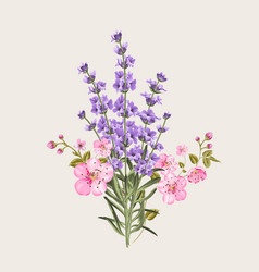 Lavender and sakura flowers vector