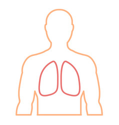 mens contour with the designation of healthy lungs vector image