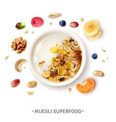 Muesli superfood realistic composition vector
