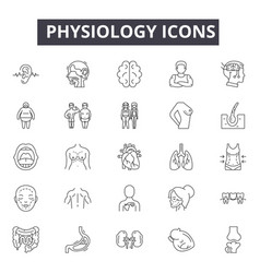 Physiology line icons signs set outline vector