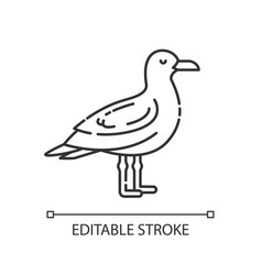 Seagull pixel perfect linear icon vector